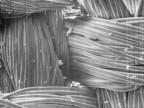 Антифрикционная ткань «Даклен-1» под микроскопом